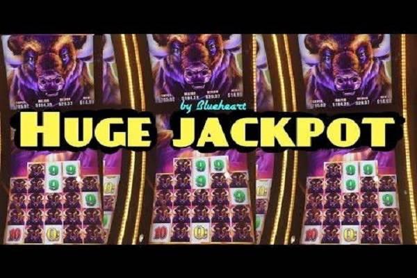 Buffalo jackpot casino games